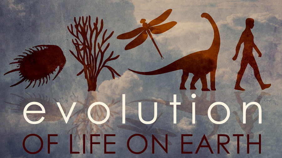 Evolution of Life on Earth - Part 2
