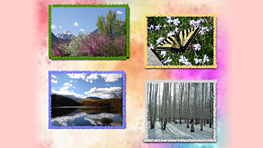 Ouray: The Four Seasons